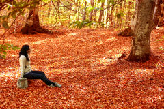 Woman sitting on the bench in autumn forest Royalty Free Stock Image
