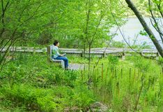 Woman Sitting on a Bench Reading a Book Royalty Free Stock Image