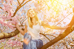 Woman sitting in cherry tree on sunny day Royalty Free Stock Photo