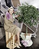 Woman sitting on a crate of oranges next to a plane and citrus tree Stock Photos