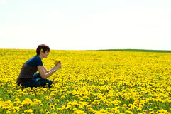 Woman sitting in a Dandelionfield Stock Photography