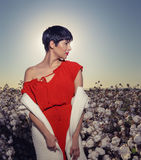 Woman sitting in a field of cotton on red desert gravel in Arizona Stock Photos