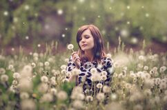 Woman Sitting in a Field of Flowers Stock Images