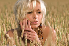 Woman sitting on a field of wheat Royalty Free Stock Images