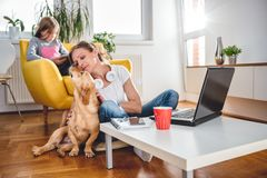 Woman Stroking dog. Woman sitting on the floor and Stroking dog at home while daughter sitting on the armchair and using tablet royalty free stock image