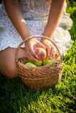 Woman sitting on grass with basket of green apples Stock Photos