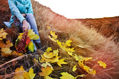 Woman sitting on the grass with a bouquet of autumn leaves. Stock Image