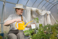 Woman sitting in greenhouse with watering-pot Stock Images