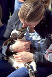 Woman sitting holding a new born lamb Royalty Free Stock Image