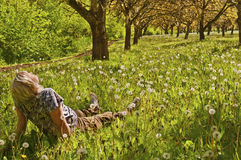 Woman sitting in meadow and trees in the sun. Woman relaxing in the meadow of plants and sunlit dandelions royalty free stock photo