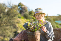 Woman sitting on nature and holding a pot with plant Royalty Free Stock Image