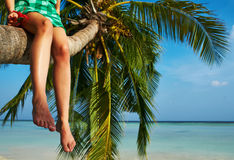 Woman sitting on a palm tree at tropical beach Stock Images