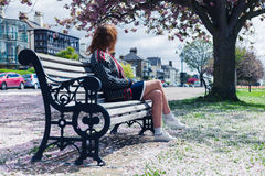 Woman sitting on park bench with cherry blossom Royalty Free Stock Images
