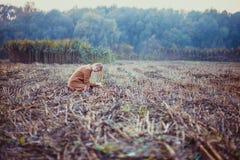 Woman sitting on the sad landscape in field. One sad woman sitting alone in the field. Woman is lost the child. Sad landscape, november sadness stock photo