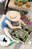 Woman sitting transplanting nursery seedlings Stock Photos