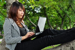 Woman sitting on the tree and playing laptop Royalty Free Stock Photo
