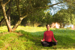 Woman sitting under a tree and meditating Royalty Free Stock Photography