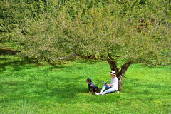 Woman sitting under a tree reading a book Royalty Free Stock Images