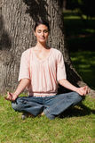 Woman sitting in a yoga position near a tree Royalty Free Stock Photography