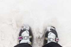 Woman ski boots. Top view. Stock Images
