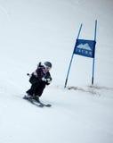 Woman Ski Racer Stock Photo