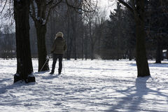 Woman skiing in the Park among the trees, white snow, winter, co Stock Photography