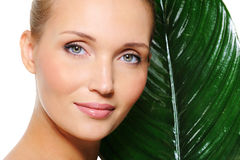 Woman skincare with plant Royalty Free Stock Image