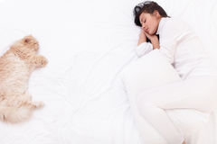 Woman sleeping on the bed with her cat royalty free stock photography