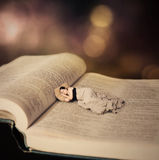 Woman sleeping on Bible. royalty free stock image