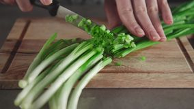 Woman slices the green onion on the wooden board in the kitchen, greens from own garden, summer vitamins, useful. Woman slices the green onion on the wooden stock footage