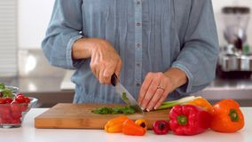 Woman slicing spring onion with knife Stock Image