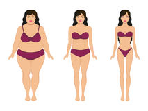 Woman slimming, fat slim girl, female weight loss. Vector illustration cartoon woman slimming. Fat and slim girl. Female body before and after weight loss, diet Stock Images