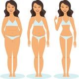 Woman slimming stage progress Royalty Free Stock Image