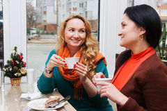 Woman in a small cafe the new year. Young women talking in a small cafe the new year Stock Image