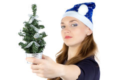 Woman with small christmas fir tree Stock Photography
