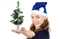 Woman with the small christmas fir tree Stock Image