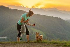Woman and dog playing fetch on top of the hill with sunset clouds in background. Woman and small dog playing fetch with pine cone on top of the hill with sunset royalty free stock image