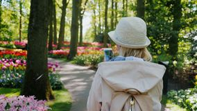 A woman with a smartphone in her hand strolls through the Keukenhof park in the Netherlands. Steadicam shot stock footage