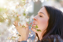 Woman smell cherry tree flower Royalty Free Stock Images