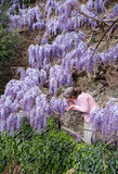 Woman smell lilac flowers Royalty Free Stock Image