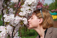 Woman smelling apple blossom Stock Photos