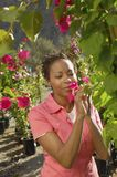 Woman Smelling Flower At Garden royalty free stock photography