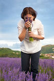 Woman smelling  lavender flowers Royalty Free Stock Images
