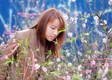 Woman Smelling The Pink Petaled Flowers Royalty Free Stock Images