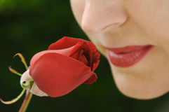 Woman Smelling Rose Bud Stock Photos