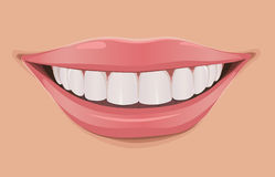 Woman smile. Teeth are very white and clean vector illustration