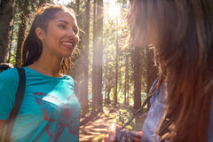 Woman smiling to friend at hiking trail path in forest woods during sunny day.Group of friends people summer adventure Stock Photos