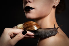 Woman with snail. Fashion. Gothic. Snail on the shoulder of a woman with black lips and nails in the studio Stock Image