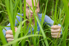 Woman sneaking through the grass. Royalty Free Stock Image