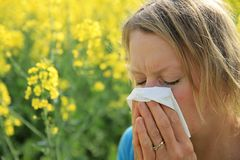 Woman sneezing because of  allergy to pollen. Image of a woman sneezing because of  allergy to pollen Royalty Free Stock Photos